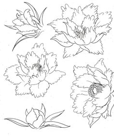 flower tattoo coloring pages | Color tattoos - Dibujos para colorear - IMAGIXS