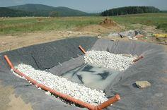 Kořenová čistička při stavbě Swimming Pools