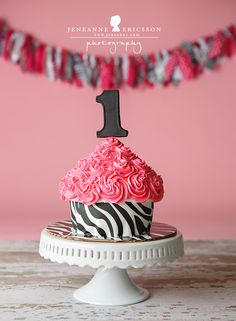 Baby L is One! Santa Rosa Cake Smash Photographer » Jeneanne Ericsson Photography zebra and pink girl first birthday