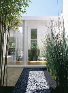 Garden: Courtyard Modern Single House Design With Bamboo Plants Gravels Glass Sliding Door And White Exterior Color Decorating Ideas