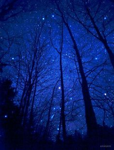 Camping under the stars. For Us Lovers of the Outdoors