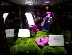 #JardinSecret mood inspired #Savelli exposition at Hotel Le Richemond, Geneva. January 2014.   www.savelli-geneve.com Geneva, The Secret, January, Mood, Inspired, Inspiration, Biblical Inspiration, Inhalation, Motivation
