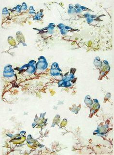 Ricepaper / Decoupage paper, Scrapbooking Sheets Blue Birds: