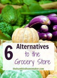 What is one of the best ways to save money in the grocery store? Find alternative sources of food. Here's a list of six ideas to get you started.