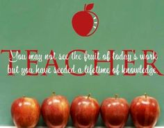 Teacher seed a lifetime of knowledge quote