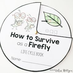 """How to Survive as a Firefly"" FREE Book Activities! 