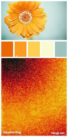 Color Inspiration Barcelona Shag Sunburst of color a recipe for a lively space. Palettes Color, Colour Pallette, Color Palate, Colour Schemes, Color Patterns, Color Combinations, Orange Palette, Fleur Design, Colour Board