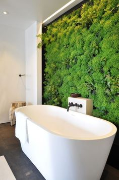 A wall of bright, fresh succulents behind a white tub makes a stunning statement. So modern and chic.