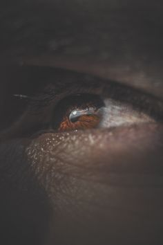 """- Once you can read my eyes and reach my soul then you'll finally find the answer for all your doubts. - Me """""""