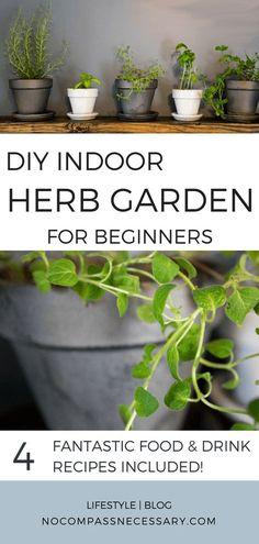 DIY Indoor herb garden for beginners! #herbs #gardening #cooking #food #flavor #cilantro #rosemary #basil #recipes #homesteading