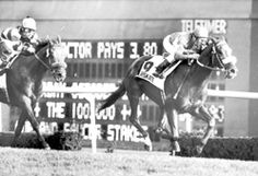 Overskate(1975)No Double- Over Speak By Speak John. Outcross. 42 Starts 24 Wins 5 Seconds 4 Thirds. $791,634. Won 1979 Bowling Green H(G2T), Stars And Stripes H(G2T), 1980 Jockey Club Cup(G2), 1979 Bernard Baruch H(G3T), 3rd United Nations H(G1T). Canadian Horse Of The Year In 1978 & 1979. Died In 1992.