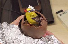 まだ間に合う!カンタン手づくり「チョコエッグ」