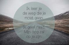 Ik onderwijs u en leer u de weg die u moet gaan; Ik geef raad, Mijn oog is op u. Psalm 32:8  #Belofte, #God, #Nabijheid  http://www.dagelijksebroodkruimels.nl/psalm-32-8/