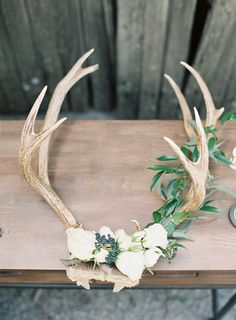 DIY Holiday Floral Antlers - Home Decorations Antler Wall Decor, Antler Art, Skull Decor, Diy Wall Decor, Antler Decorations, Antler Wedding Decor, Boho Wedding, Deer Antler Crafts, Antler Mount