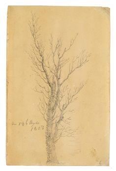 Caspar David Friedrich (Greifswald 1774-1840 Dresden), Study of a tree, 18 April 1803.