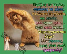Funny Greek, Greek Quotes, Picture Quotes, Jokes, Pictures, Photos, Animals, Funny Things, Relax