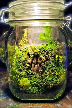 The Wonder Room, a series of miniature creations designed by Tony Larson, who imagines some highly detailed scenes in aquariums, terrariums and other glass containers.