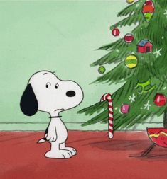 Find GIFs with the latest and newest hashtags! Search, discover and share your favorite Snoopy GIFs. The best GIFs are on GIPHY. Christmas Dance, Merry Christmas Funny, Peanuts Christmas, Christmas Cartoons, Charlie Brown Christmas, Christmas Humor, Xmas, Christmas Images, Christmas Ideas