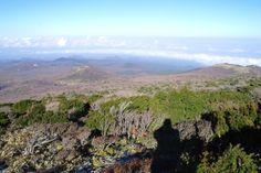 제주도 대표산~! 남한의 대표산! 한라산 등반기를 만나보자~! 원문보기 : http://blog.naver.com/travelwoori/220007325756