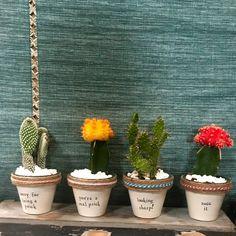 Mini Succulent Pun Planters {PlantPuns} – Makers and Goods Succulent Puns, Succulents, Succulent Planters, Painted Flower Pots, Painted Pots, Potted Plants, Indoor Plants, Plant Pots, Garden Puns