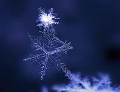 Creative Winter Photography