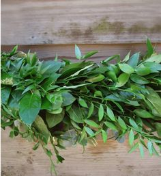 Soft Ruscus And Salal Swag Garland