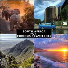 Looking for things to do when in South Africa? Discover their beaches, honeymoon destinations and more. Not forgetting the wildlife and dramatic landscapes: experience the Table Mountain, Kruger National Park, Museums, Cape Town, and more, with The Dream Africa. #staycurious #southafrica #exploreafrica #traveldestinations #africadestinations #TableMountain #KrugerNationalPark #Museums #Cape Town #Johannesburg #Durban #wildlife #safari #landscapes