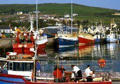 Le port coloré de Dingle en Irlande...   #dingle #ireland #irlande #alainntours #harbour #port   © Failte Ireland Connemara, Beaux Villages, Boats, Ships, Victorian Architecture, Ireland, Boating, Boating, Boat
