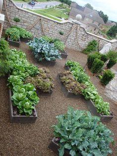 Solinski Potager - an Ornamental Vegetable Garden, designed and installed by Karen Atkins, Proper Gardens
