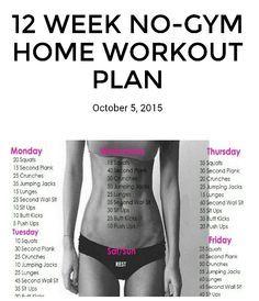 12 week No Gym Workouts