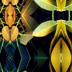 Taiteilija: Metsähuone KirsiMarja  Teosnimi: Forest Flower 1, sarjasta Forest Room  Tekniikka: kromogeeninen värivedos, valokuvakollaasi  Koko: 50x50 cm  Vuosi: 2002  Lainahinta: 40 €/kk  Hinta: 700 €