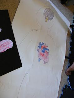 Homeschool Escapade: Human Body Unit....some of it is a little much for my kiddos ages but still pretty creative ideas.