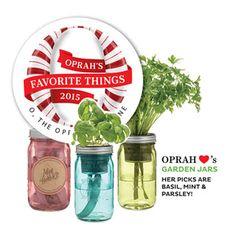 Modern Sprout Garden Jar for Sale at JP Mint Garden, Jars For Sale, Hydroponics System, Diy Hydroponics, Mason Jar Projects, Unusual Plants, Organic Herbs, Fresh Herbs, Garden Projects