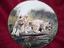 W.S. George Plate Double Trouble Charles Frace Nature's Playmates Lynx Cubs Cats Big Cats Art, Cat Art, Trouble, Lynx, Plate, Nature, Animals, Dishes, Naturaleza