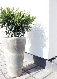 "defuseing: ""you're beautiful x "" Concrete Planters, Garden Planters, Planter Pots, Exterior Design, Interior And Exterior, Fixer Upper House, Nature Decor, Garden Gates, Potted Plants"