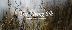 The Flying Elk - Proper pub grub