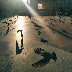 La ciudad de los palacios va dejando paso al alba... Se va perdiendo la calma para cuando el sol asoma... Todo el esplendor decrece la gente las calles toma... Catedral desaparece entre smog y caca de paloma.... #Barcelona #cafetacuba Barcelona, Instagram, Palaces, Cities, Barcelona Spain