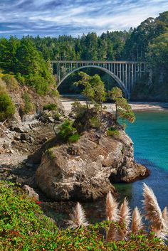 Russian Gulch Bridge Highway 1 - Mendocino, California One of my favorite places! California Camping, Mendocino California, Mendocino Coast, California Dreamin', Northern California, Fort Bragg California, California Destinations, The Places Youll Go, Places To See