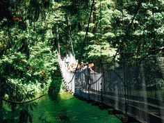 Buntzen Lake offers hiking, water, and a suspension bridge.