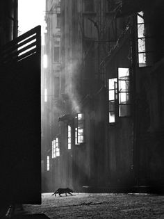 old Hong Kong street 1950ies