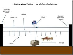 Catching Catfish With A Trotline, How To Set A Trotline. That said, check your game and wildlife regulations about construction and tagging information.
