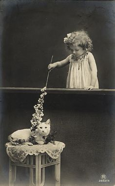 Vintage photo - little girl and cat