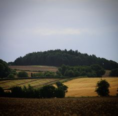 Vestfynsk augustlandskab #visitfyn #fyn #nature #nature_perfection #naturelovers #mothernature #natur #denmark #danmark #dänemark #landscape #assensnatur #assens #mitassens #vildmedfyn #fynerfin #vielskernaturen #nofilter #instapic #picoftheday #sommer #summer2016 #grain