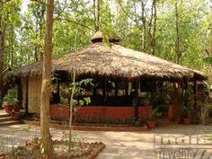 Kanha Jungle Lodge - Kanha Madhya Pradesh, India Travel, Lodges, Gazebo, Wildlife, Outdoor Structures, Cabins, Kiosk, Pavilion