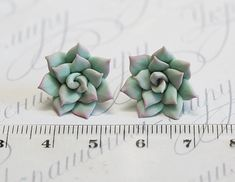 Hey, I found this really awesome Etsy listing at https://www.etsy.com/se-en/listing/289893651/mint-succulent-earrings-polymer-clay