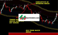 Forex Trading System, Line, Check, Fishing Line