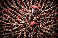 What humans can do - how and why and where they strive to do - stretches as far and wide as humanity itself. An unexpected but no less spectacular example. http://theweek.com/captured/628539/mesmerizing-power-human-tower?utm_campaign=newsletter&utm_source=afternoon&utm_medium=10_08_16-article_10-628539