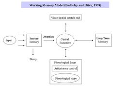 working memory model essay