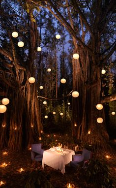 Great romantic idea if you're planning to propose to someone... Even if a proposal isn't in the plans, a nice fancy romantic date here would be freaking incredible. <3 infinite brownie points!!