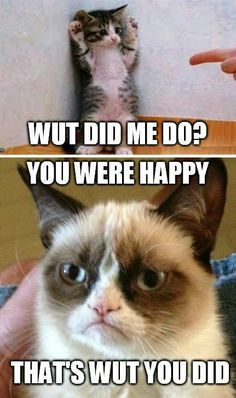 Grumpy cat- being happy is a punishable crime